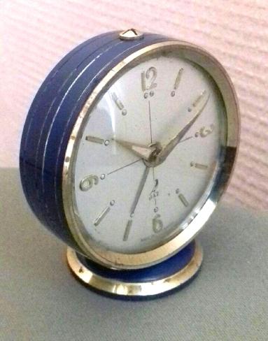 scintic bleu romain (1)