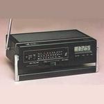 1981 poinic-81