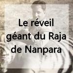 raja-saadat-ali-khan-sahab-of-nanpara-state-by-rohit-sonkiya1