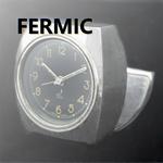 fermic