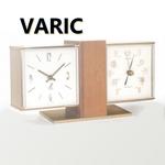 varic1