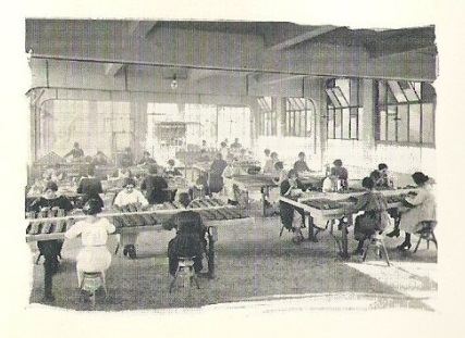 prospectus-1923-page-7