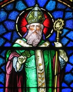 sainty patrick (1)