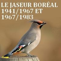 jaseur-borc3a9al-2